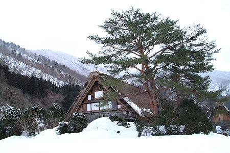 真冬の白川郷と神秘的にライトアップされた飛騨の里!