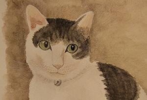 水彩画講座 ユリの花、山の風景、ネコの絵をデッサンから色塗りまで行いました。