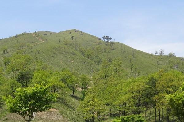 広島県の深入山への登山のための情報をまとめました。   Lifeなび